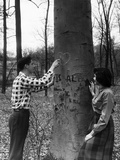 Teenagers Carving Initials on a Tree Photographic Print by Philip Gendreau