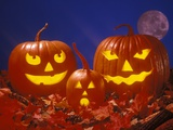 Family Group of Three Illuminated Candle Lit Carved Halloween Pumpkin Heads Lámina fotográfica