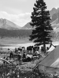 1920s-1930s Group Camping in Tents Horses with Riding Gear in Background Mountains Photographic Print