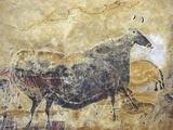 Black Cow Cave Painting at Lascaux Fotografisk tryk