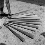 1950s Baseball Player Selecting from a Variety of Bats Photographie