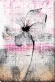 Flower 2 Stretched Canvas Print by Parvez Taj