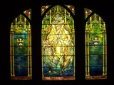 Tiffany Stained Glass Window Photographic Print