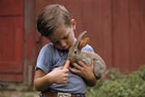 Boy Feeding a Rabbit Photographic Print by William Gottlieb
