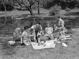 1950s Family with Collie Dog Picnicking in Park by Pond Photographie