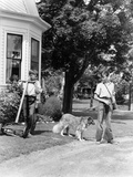 1940s Boy with Fishing Gear Collie Dog Second Boy Mowing Grass with Push Mower Photographic Print