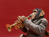 1960s Monkey Chimpanzee Wearing Suit and Tie Playing Trumpet Fotografická reprodukce