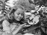 1950s Pretty Little Girl Smiling at Hibiscus Flower and Butterfly in Garden Photographic Print