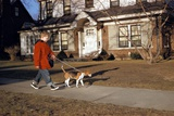 Boy Walking Dog on Sidewalk Photographic Print by William P. Gottlieb