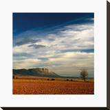 Spanish Landscape II Stretched Canvas Print by Bill Philip