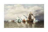 Among the Icebergs, Coast in Labrador Giclee Print by William Bradford