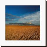 Spanish Landscape I Stretched Canvas Print by Bill Philip