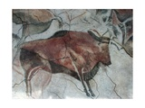 Replica of Cave Painting of Bison from Altamira Cave Giclee Print