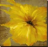 Colourful Flowers I Trykk på strukket lerret av Bridges,