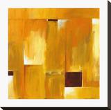 Colori Autunnali II Stretched Canvas Print by Ronald Sweeney