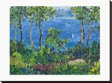 Sea Dreams Stretched Canvas Print by Tania Forgione