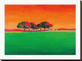 The Vineyard Stretched Canvas Print by Gerry Baptist