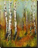 Aspen Summer Stretched Canvas Print by  Georgie