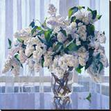 White Lilac Stretched Canvas Print by Valeriy Chuikov