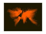 Orange Radiant World Map Art by  NaxArt