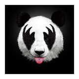 Panda Rocks Prints by Robert Farkas