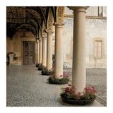 Villa Portico No. 1 Posters by Alan Blaustein