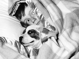 Boy Hiding under Blanket in Bed with Dog Photographic Print by D. Corson