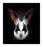 Rabbit Rocks Affiches par Robert Farkas