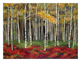 Aspen Forest Prints by Miro Kenarov