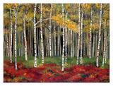 Aspen Forest Posters by Miro Kenarov