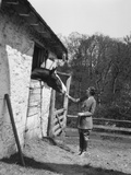 1920s Woman at Stable Feeding Horse Wearing Riding Jacket Tie Jodhpurs Boots Photographic Print by H. Armstrong Roberts