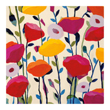 Bursting Poppies Print by Carrie Schmitt