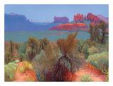 High Desert Plakaty autor Mary Silverwood
