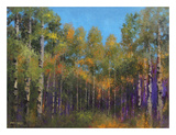 Aspen Autumn Art by Thomas Stotts