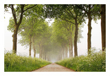 This Appears Posters by Lars Van de Goor