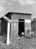 1950s Cocker Spaniel Puppy in Doghouse with Beware of Dog Sign Photographic Print by D. Corson