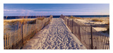 Pathway to the Beach Prints by Joseph Sohm