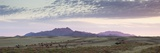 Panoramic View at Dusk over the Magnificent Landscape of the Namib Rand Game Reserve Photographic Print by Lee Frost