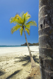 Beautiful Palm Fringed White Sand Playa Carrillo Photographic Print by Rob Francis