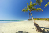 The White Sand Palm-Fringed Beach at This Laid-Back Village and Resort Photographic Print by Rob Francis