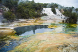 Artist's Palette and Rainbow Terrace at Orakei Korako Thermal Park Photographic Print by Matthew Williams-Ellis