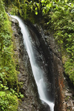 Waterfall at Arenal Hanging Bridges Where the Rainforest Is Accessible Via Walkways Photographic Print by Rob Francis