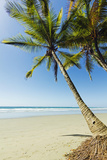 The White Sand Palm-Fringed Beach at This Laid-Back Village and Resort; Samara Photographic Print by Rob Francis