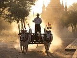 Bullock Cart on a Dusty Track Among the Temples of Bagan Photographic Print by Lee Frost