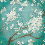 White Cherry Blossoms I Poster by Danhui Nai