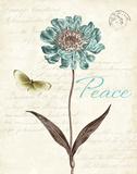 Slated Blue IV Posters av Katie Pertiet