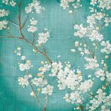 White Cherry Blossoms II Kunstdrucke von Danhui Nai
