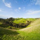 Countryside on the Walk to Wharariki Beach Photographic Print by Matthew Williams-Ellis