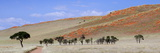 Panoramic View Showing Trees and Grass-Covered Orange Sand Dunes Photographic Print by Lee Frost