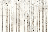 Birch Trees on White Affiches par Avery Tillmon